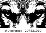 eye contact with severe wolf.... | Shutterstock .eps vector #207321010