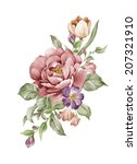 watercolor illustration flower... | Shutterstock . vector #207321910