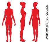 anatomi,kol,çıplak,biyoloji,meme,yapı,montaj,açık,tam,cinsiyet,bacak,manken,modeli,tıp,modeli