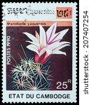 Small photo of CAMBODIA - CIRCA 1990: A stamp printed in Cambodia, shows cactus mamillaria yaquensis, circa 1990