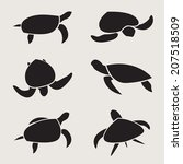 vector group of turtle design... | Shutterstock .eps vector #207518509