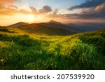 grass on mountain hill during... | Shutterstock . vector #207539920