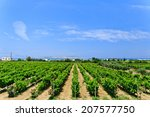 greece  island of kos   jun 10... | Shutterstock . vector #207577750