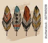 hand draw colorful feather... | Shutterstock .eps vector #207585058