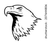 Bald Eagle  American Eagle.