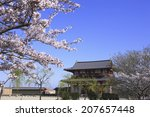 sakura and suzaku gate of nara... | Shutterstock . vector #207657448