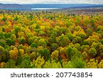 A Top View Of Colourful Forest...