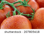 tomatoes on the vine with water ... | Shutterstock . vector #207805618