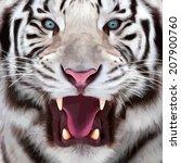 colorful closeup portrait of a... | Shutterstock .eps vector #207900760