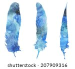 watercolor decorative feathers... | Shutterstock . vector #207909316