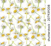 daisies floral background....   Shutterstock . vector #207939208