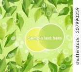 frame of green leaves | Shutterstock . vector #207990259