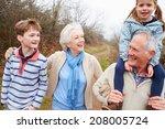 grandparents with grandchildren ... | Shutterstock . vector #208005724