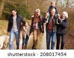 multi generation family on...   Shutterstock . vector #208017454