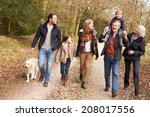 multi generation family on... | Shutterstock . vector #208017556