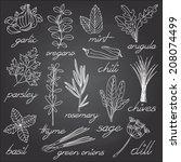 cute set of hand drawn herbal... | Shutterstock .eps vector #208074499