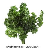 green parsley isolated over... | Shutterstock . vector #2080864