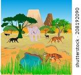 african savannah vector... | Shutterstock .eps vector #208192090