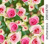 seamless  with pink roses and... | Shutterstock .eps vector #208518700