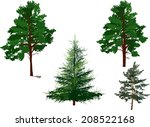 illustration with evergreen... | Shutterstock .eps vector #208522168