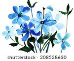 watercolor beautiful flowers... | Shutterstock . vector #208528630