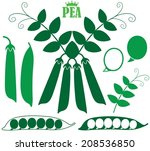 pea. vector illustration | Shutterstock .eps vector #208536850