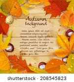 yellow and red autumn leaves... | Shutterstock .eps vector #208545823