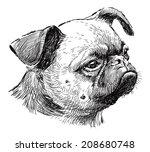 pug head | Shutterstock . vector #208680748