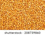 processed organic wheat grains... | Shutterstock . vector #208739860