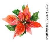 red poinsettia  bethlehem star  | Shutterstock .eps vector #208753210