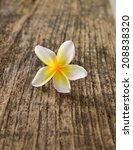 frangipani on the old grunge... | Shutterstock . vector #208838320