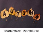 autumn leaves | Shutterstock . vector #208981840