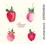 fresh strawberries painted with ... | Shutterstock .eps vector #209004844