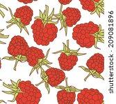 ripe raspberry seamless pettern ... | Shutterstock . vector #209081896