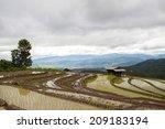 rice fields on terraced. | Shutterstock . vector #209183194