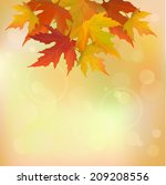 abstract autumn background | Shutterstock .eps vector #209208556