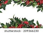 holly background border... | Shutterstock . vector #209366230