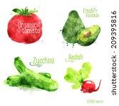 food vegetable watercolor color ... | Shutterstock .eps vector #209395816