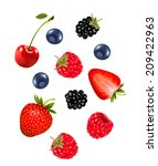 set of juicy berries. vector. | Shutterstock .eps vector #209422963