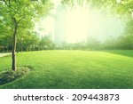 sunny day in park | Shutterstock . vector #209443873