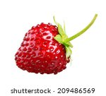 Wild Strawberry Isolated On...