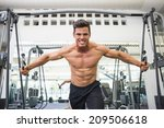 portrait of a shirtless young... | Shutterstock . vector #209506618