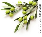 green olives on white... | Shutterstock . vector #209506909