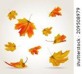 falling leaves set  vector... | Shutterstock .eps vector #209508979