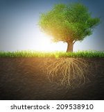 tree with roots  | Shutterstock . vector #209538910