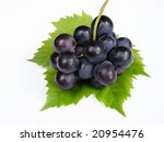 Blue grapes on green leaf against white background - stock photo