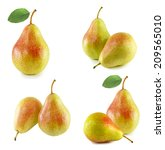 set of yellow pears isolated on ...   Shutterstock . vector #209565010