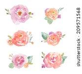 watercolor flower bunches....   Shutterstock . vector #209571568