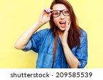outdoor colorful summer... | Shutterstock . vector #209585539