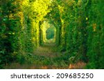 Natural Tunnel Of